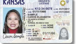 Buy real registered drivers license online
